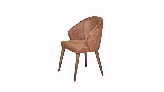 Vanensi Sandalye